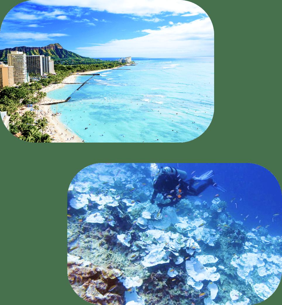 赤ちゃんにもサンゴ礁にもとことん優しいUVケアです。